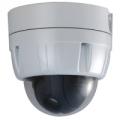 MDS-i101 Видеокамера сетевая (IP камера) купольная поворотная