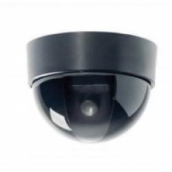 ED-200P / 8 Видеокамера купольная цветная